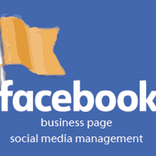 manage and update facebook page