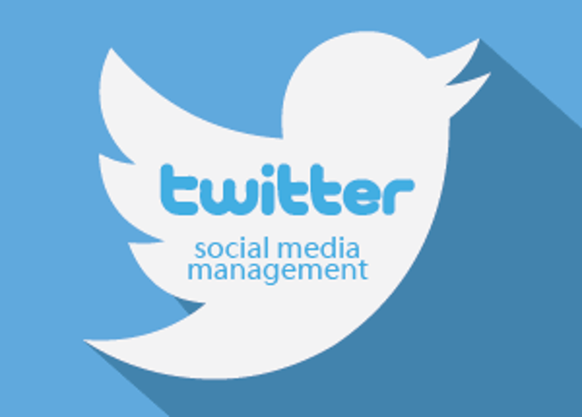 manage and update twitter account
